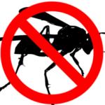 wasp control markham